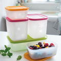 Tupperware Eis-Kristall-Set (5) Gefrierboxen im Set