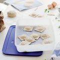 Tupperware Eis-Kristall 2,25 l Großer Gefrierbehälter für größere Mengen