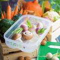 Tupperware KlimaOase 1,8 l flach perfektes Klima für Obst und Gemüse im Kühlschrank