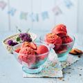 Tupperware Profi-Chef Sorbet Erdbeer Eis selbst machen