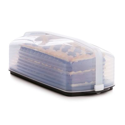Tupperware Plateau On the go rectangulaire