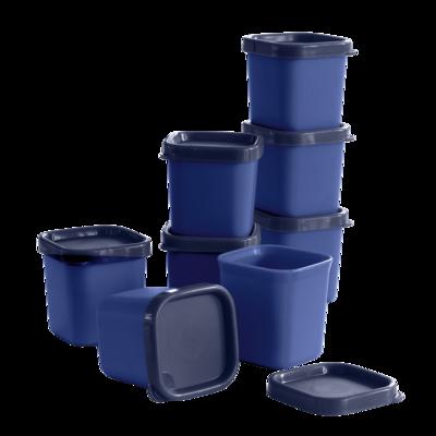 Tupperware MicroGourmet Förmchen blau (8)