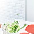 Tupperware Salat-Karussell 2 perfekt zum trockenschleudern von Salat