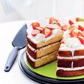 Tupperware Griffbereit Tortenstück Tortenheber zum Teilen und Vorlegen von Kuchen