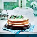 Tupperware Tortentwist Höhenverstellbarer Kuchenbehälter