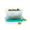 Tupperware Eis-Kristall 170 ml (2) zum Einfrieren von Lebensmitteln