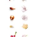 Tupperware Mando-Junior Gemüseschneider, Hobel, Gemüsehobel, Gurkenhobel, Obstschneider, Gemüsereibe, Allzweckreibe