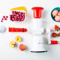 Tupperware Profi-Chef Sorbet leckeres Eis selber machen