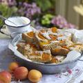 Tupperware Vom Blech weg leckere Rezepte für Blechkuchen und Pizzateig