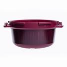 Behälter MicroQuick
