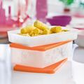 Tupperware Langer Deckel Gefrier-Behälter
