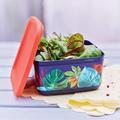 Tupperware Cubix Tropical 650 ml schöne Vorratsbox im Hawaii look