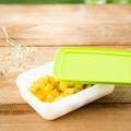 Tupperware Eis-Kristall 1,0 l falcher Gefrierbehälter