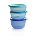 Tupperware Clarissa®-Set Ein tolles Dosenset für den Kühlschrank
