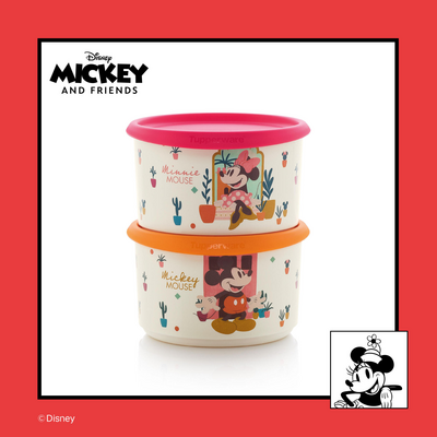 Tupperware Mickey und Minnie-Set (2)