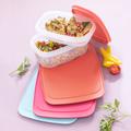 Tupperware Junior-Cool`N Fresh-Set (4) Kleines Kühlschrankset zum Frischhalten von Wurst oder Käse