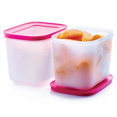 Tupperware Cajas de Congelación 1.1L (2)