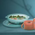 Tupperware MicroTup Menüteller Großer Menuteller zum erwärmen von Speisen